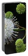 Buttonbush Flowers Portable Battery Charger