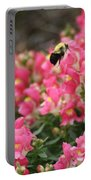 Buzzing Around Portable Battery Charger