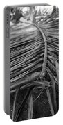 Bw Fallen Frond Portable Battery Charger