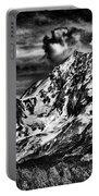 Bw Mountains Alaska  Portable Battery Charger
