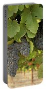 Cabernet Grapes One Portable Battery Charger