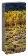 Cache La Poudre River Colors Portable Battery Charger by Jon Burch Photography