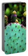 Cacti And Friends Portable Battery Charger by Jessica Manelis