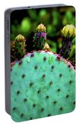 Cacti And Friends Portable Battery Charger