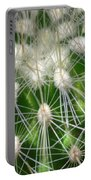 Cactus 1 Portable Battery Charger