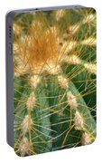 Cactus 2 Portable Battery Charger