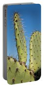 Cactus Against Blue Sky Portable Battery Charger