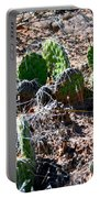 Cactus, Arches National Park Portable Battery Charger