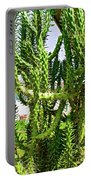 Cactus At Pilgrim Place In Claremont-california  Portable Battery Charger