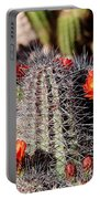 Cactus Bloom 033114f Portable Battery Charger