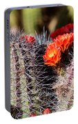 Cactus Bloom 033114g Portable Battery Charger