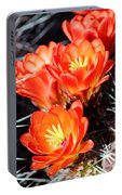 Cactus Bloom 033114j Portable Battery Charger