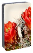 Cactus Bloom 033114m Portable Battery Charger
