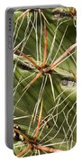 Cactus Diagonal Pattern Portable Battery Charger