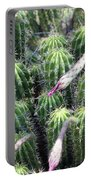 Cactus Drama Portable Battery Charger