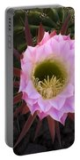 Cactus Flower Arizona 1 Portable Battery Charger