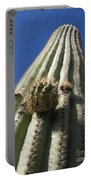 Cactus Height  Portable Battery Charger