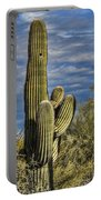 Cactus Home Portable Battery Charger