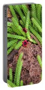 Cactus Splendor Portable Battery Charger