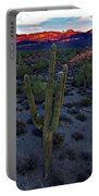 Cactus Sun Beam Portable Battery Charger