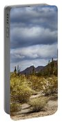 Cactus Valley Portable Battery Charger