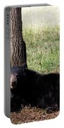 Cades Cove Bear Portable Battery Charger