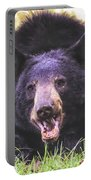 Cades Cove Black Bear Portable Battery Charger