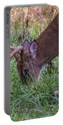 Cades Cove Buck Portable Battery Charger