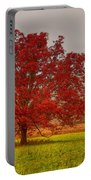 Cades Tree After The Rain Portable Battery Charger