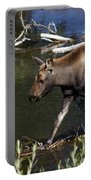 Calf Moose Portable Battery Charger