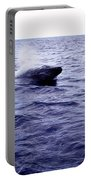 California Blue Whale Portable Battery Charger