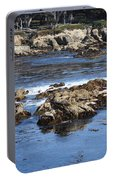 California Coast Portable Battery Charger