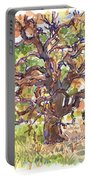 California Oak In Winter Portable Battery Charger