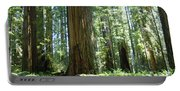 California Redwood Forest Trees Art Prints Portable Battery Charger