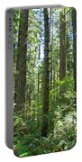 California Redwood Trees Forest Art Prints Portable Battery Charger