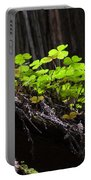 California Redwoods 4 Portable Battery Charger