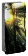 California Redwoods Portable Battery Charger by Richard Ricci