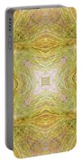 California Spring Oscillation Field Portable Battery Charger