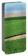 California Vineyards 3 Portable Battery Charger