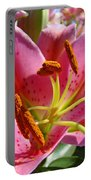 Calla Lily Art Prints Pink Lilies Flowers Baslee Troutman Portable Battery Charger