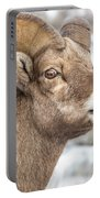 Calling All Ewes Portable Battery Charger