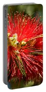 Callistemon Portable Battery Charger