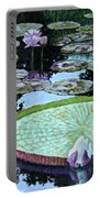Calm Reflections Portable Battery Charger