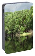 Calm River Reflections Portable Battery Charger