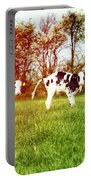 Calves In Spring Field Portable Battery Charger