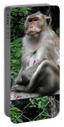 Cambodia Monkeys 3 Portable Battery Charger