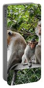 Cambodia Monkeys 5 Portable Battery Charger