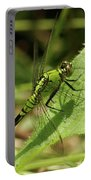 Cameo Green Dragonfly Portable Battery Charger