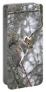 Camera Shy Grey Squirrel Portable Battery Charger