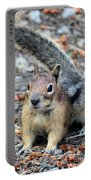 Campground Chipmunk Portable Battery Charger